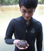 Photo of Chong