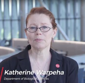Kate Warpeha