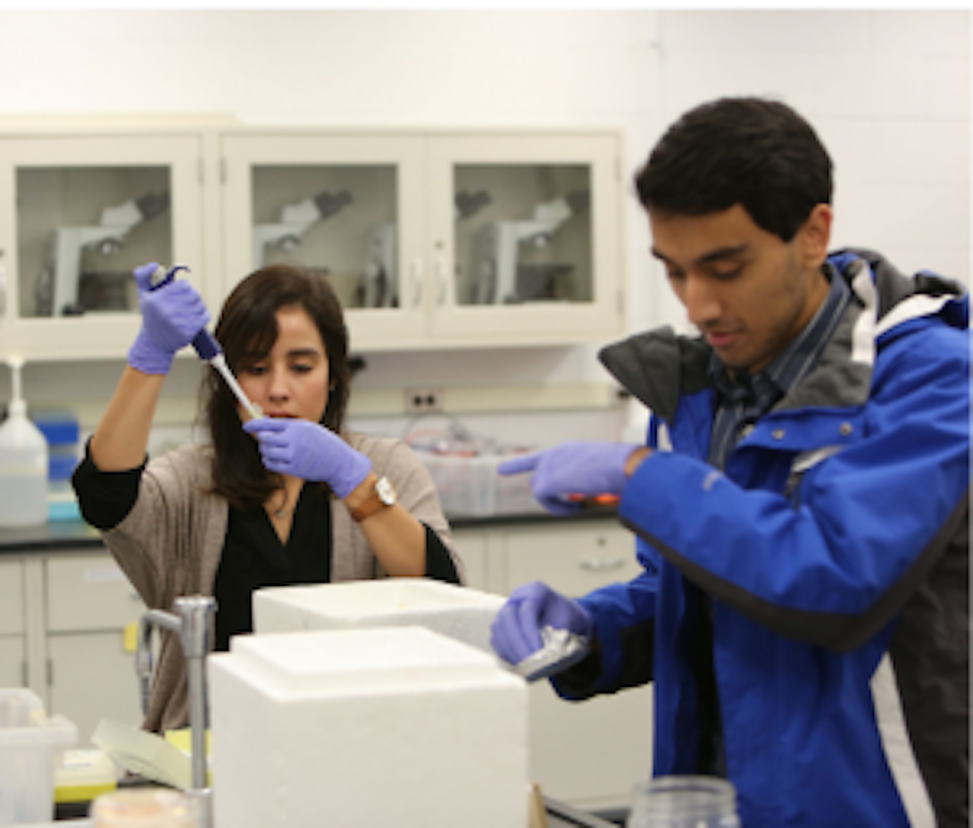 two students in a lab